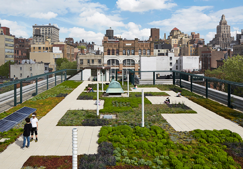 ps41-rooftop-green